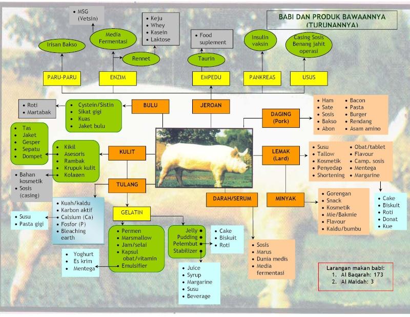 Senarai forex halal