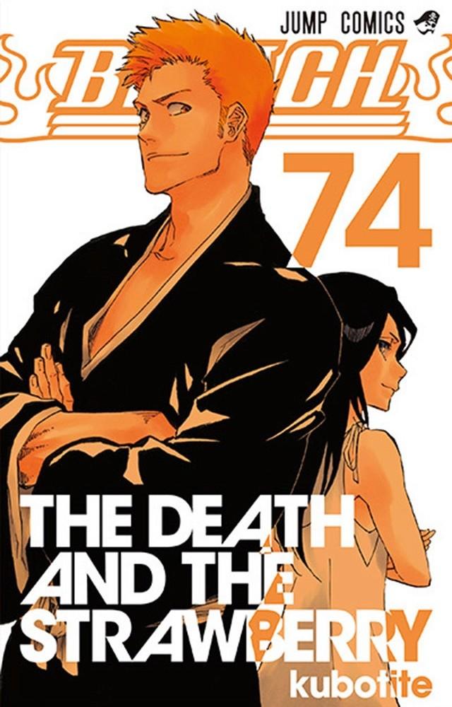 Light Novel, Actu Light Novel, Ryohgo Narita, Makoto Matsubara, Bleach,