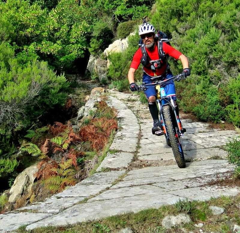 CUBE ITALY Bike Forum