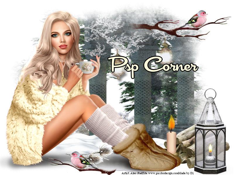 PSP Corner