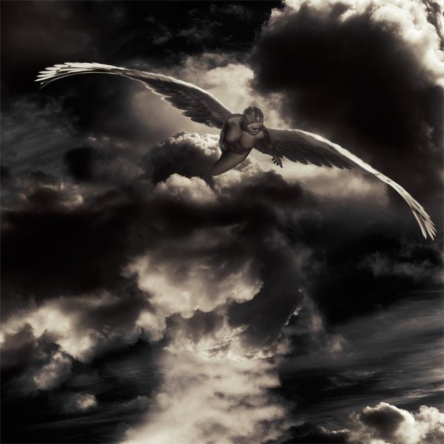 dans fond ecran ange angelo10