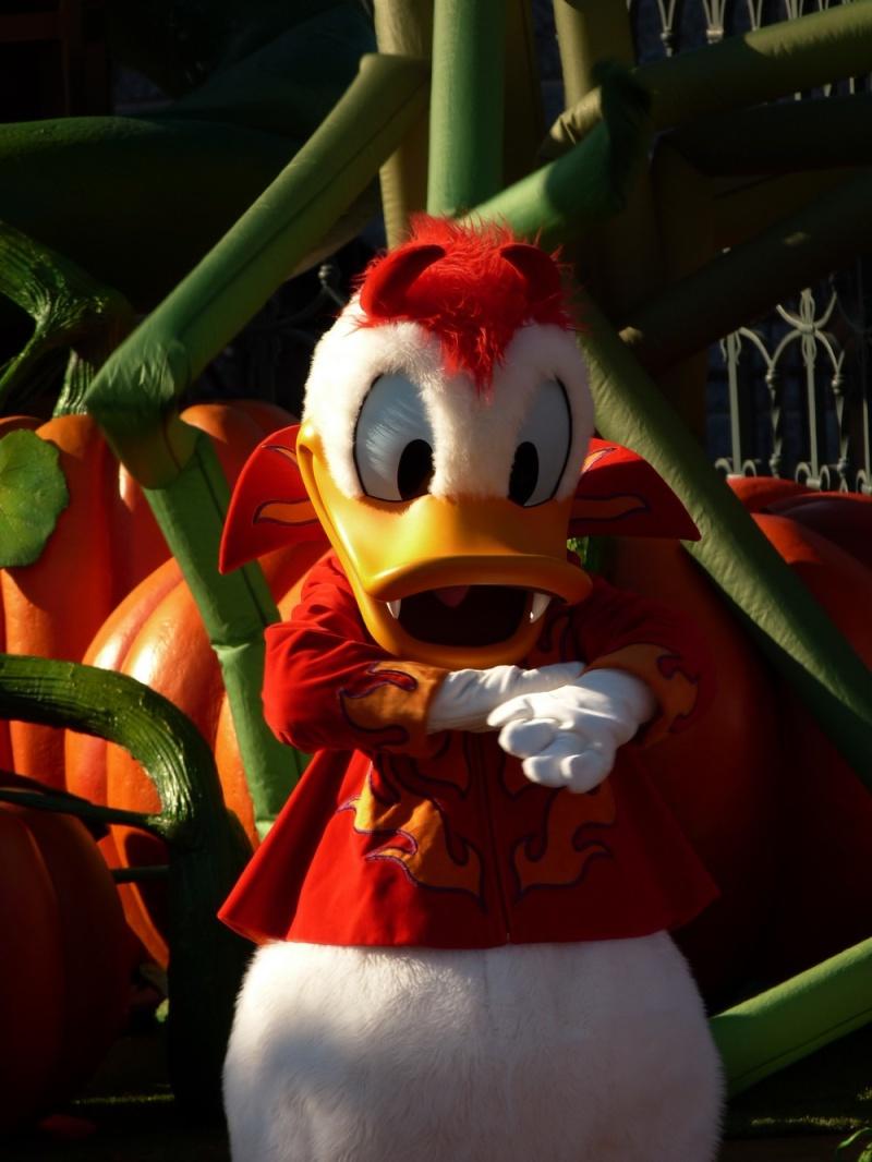 it's halloween-lo-ween everybody