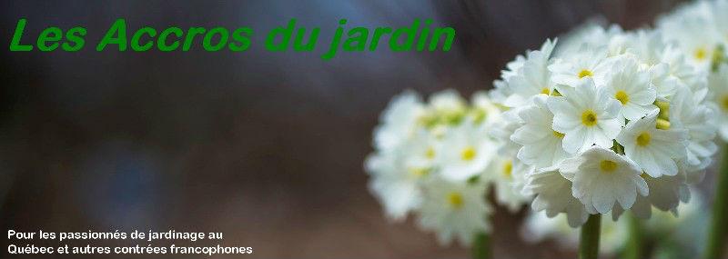 Les accros du jardin : l'Accropedia