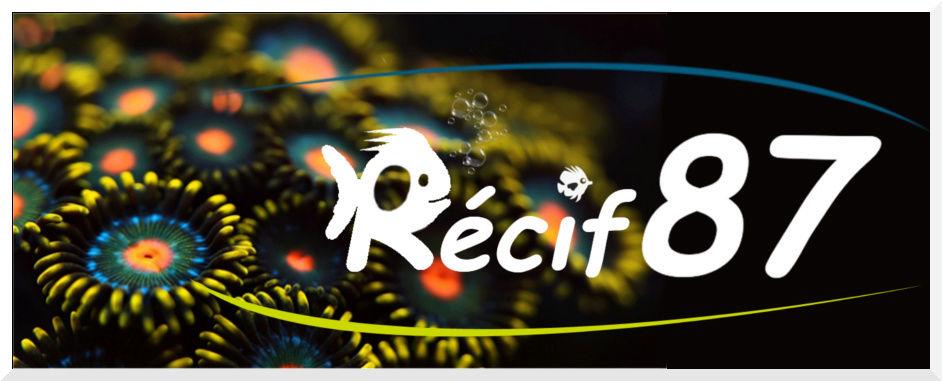 photo logo Récif87