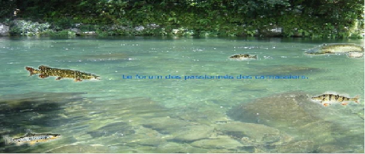 Le forum des passionnés des carnassiers ~ Fabrication Leurre Bois