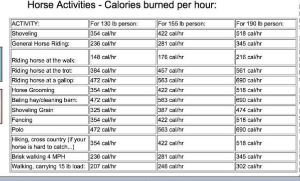 Les Calories Perdus