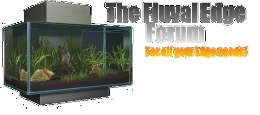 The Fluval Edge Forum