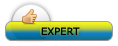 Gaming Expert