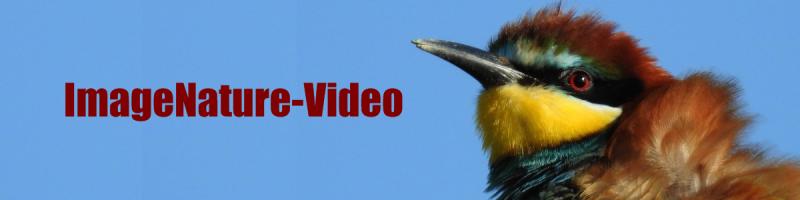 ImageNature-vidéo