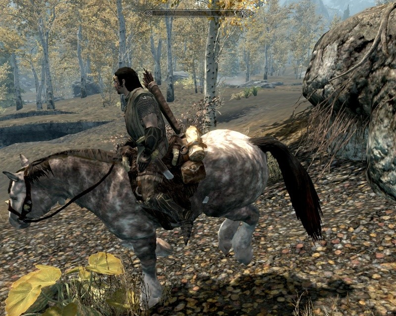 chevaux gris violet