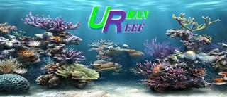 Urban Reef