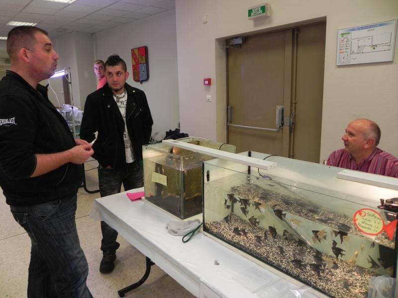 Bourse aux poissons de l 39 h pital moselle le 23 sept for Bac hopital poisson