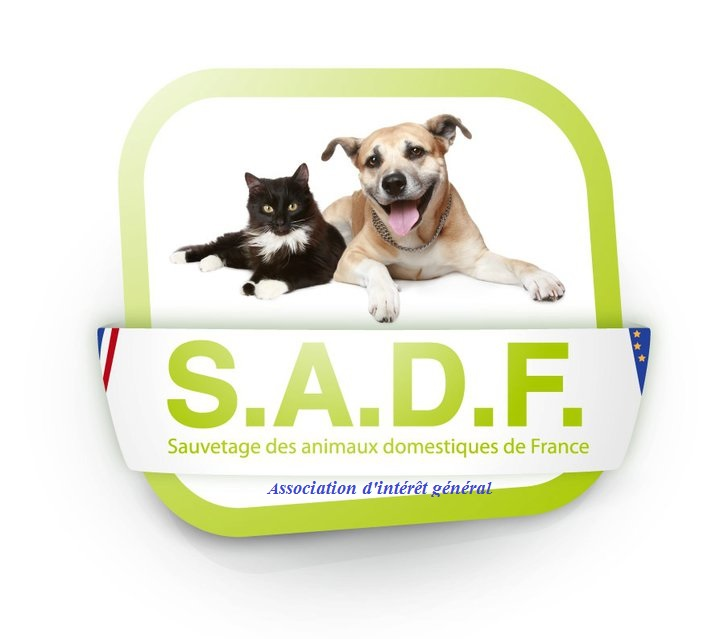 Association SADF