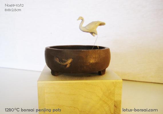 bonsai23.jpg