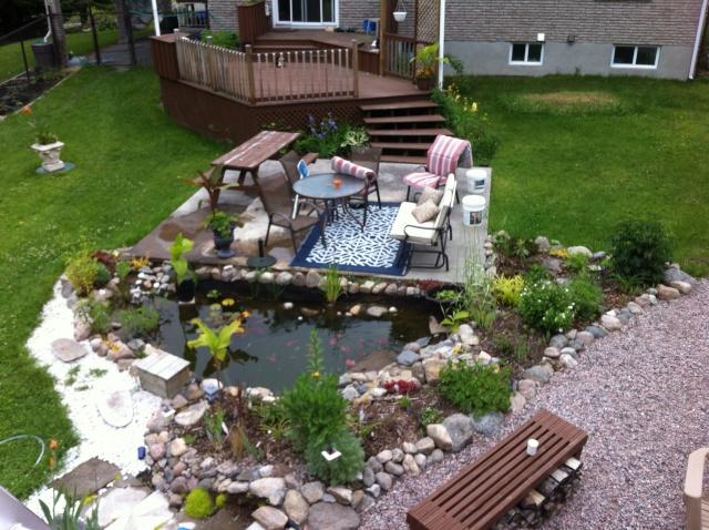 Petit bassin exterieur poitiers 2336 5 - Petit jardin luxuriant poitiers ...