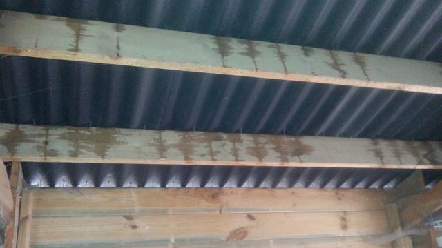 Condensation toiture d 39 atelier - Bac acier anti condensation ...