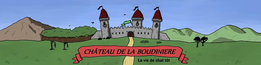 Château de La Boudinière