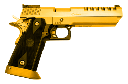 SE-Eagle 911 | Goldie