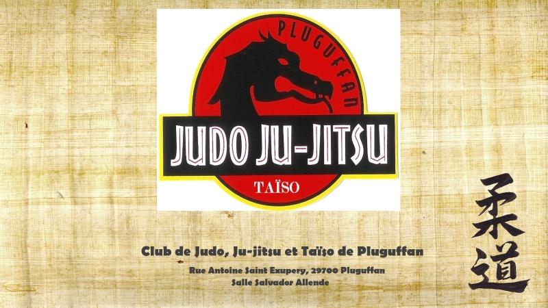 club de judo de pluguffan