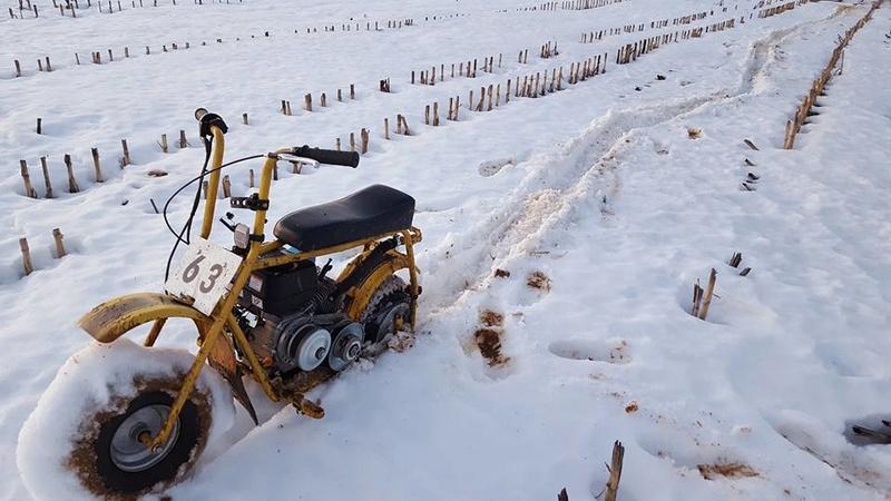 Predator 212 powered DB30 - DIY Go Kart Forum