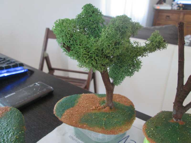 Decor arbres zone savane zone jungle etc for Decoration zone