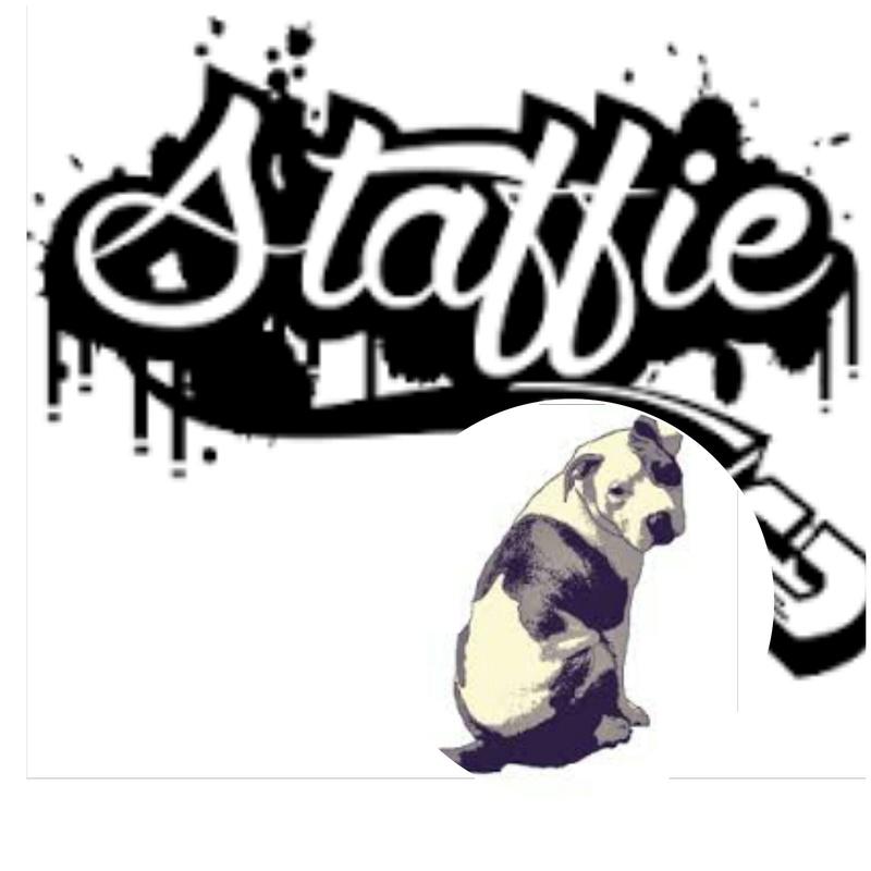 Staffie passion
