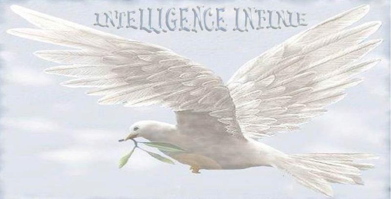 Intelligence Infinie