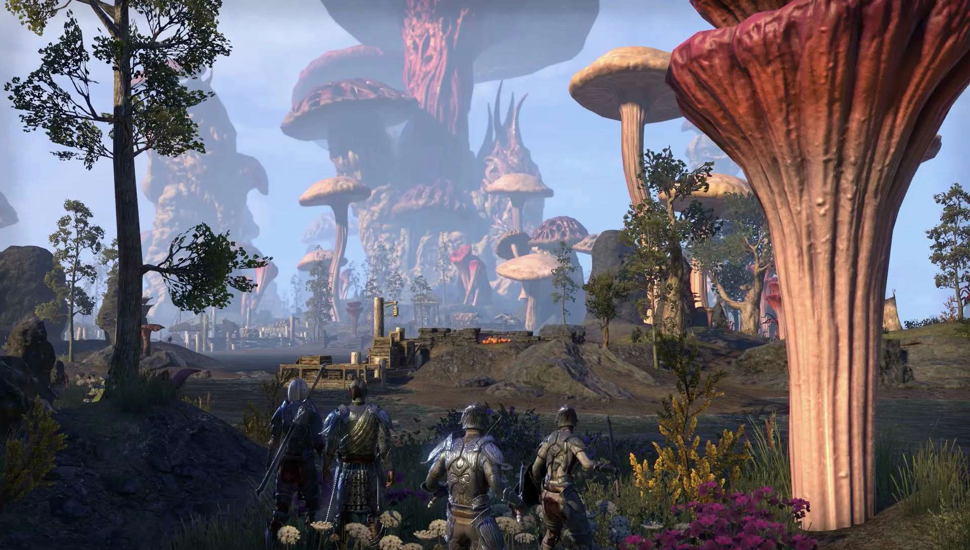 The Elder Scrolls Online: Morrowind Party