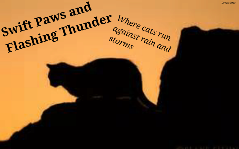 Swift Paws and Flashing Thunder