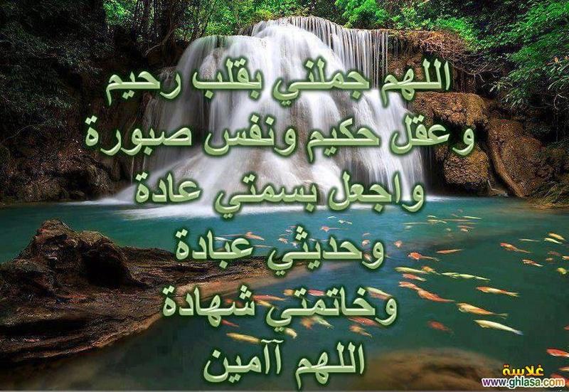 منتدى شيخ شيوخ اليمن الشيخ التيجاني 00967714654666
