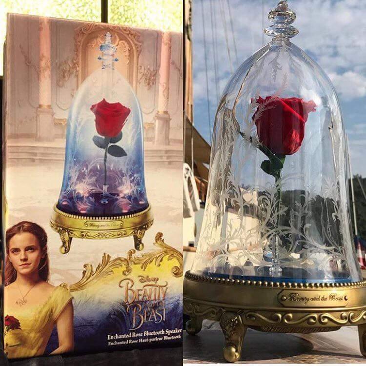 La belle et la b te film live page 14 - Rose sous cloche la belle et la bete ...