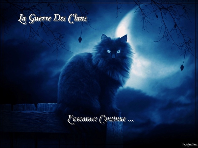 Forum du Clan de la Lune