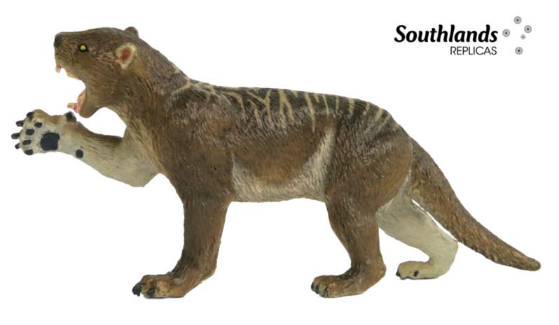 thylac19.jpg