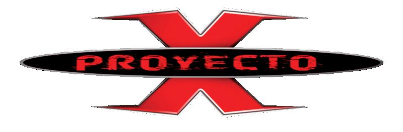 Proyecto X online
