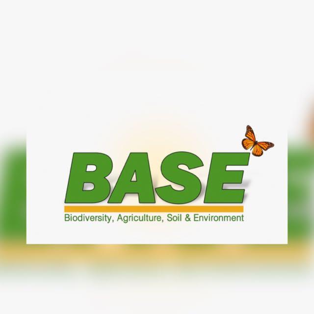 Base Ireland